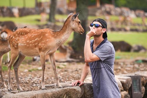 Deer Whisperer