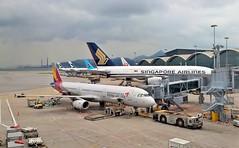 Chek Lap Kok 16 - 7 (lemoncat1) Tags: cathaypacific hongkong internationalairport cheklapkok airport ethiopian singaporeairlines aircraft plane airplane aeroplane airliner airportgate jetbridge airbus a320 a321 a380 boeing 787 dreamliner 777 a350xwb xwb
