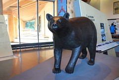 Bear Sculpture at Craig Thomas Discovery and Visitor Center, Grand Teton National Park, Wyoming, USA (Bencito the Traveller) Tags: bearsculpture craigthomasdiscoveryandvisitorcenter grandtetonnationalpark wyoming usa