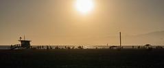 CSD_6359 (colbertdavis) Tags: afsnikkor85mm114g venicebeach lifeguardtower sunset