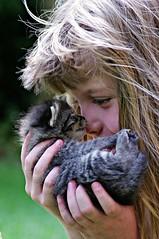two close friends (Angelo Petrozza) Tags: kittens gattini micio gatto child hair capelli blonde biondi pentax portrait ritratto