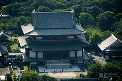 Aerial view of Zojoji Temple () (christinayan01) Tags: aerial zojoji temple tokyo architecture building