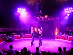 El Circo (20) (calafellvalo) Tags: circocircuscirquezirkusclownspayasosemocionesfantasiamagiacalafelvalo raluy circo zirkus sufrir suspirar fantasa fantasy sigh sueos dreams trume rves circoraluy suspense miedo fear trepidation circus cirque equilibrios payasos clowns trapecistas trapze trapez emociones emotionen emotions passions angst sentimirntos feelings feel affect risas lacht lache laughs mirth merriment magia magie magic calafellvalo art