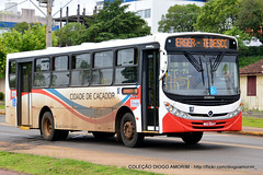 107 (American Bus Pics) Tags: caador