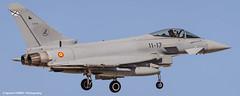 Spanish Typhoon (Ignacio Ferre) Tags: aircraft airplane avin aviation military fighter tlp tacticalleadershipprogramme albacete losllanos leab spain spanishairforce espaa landing eurofighter2000 typhoon ef2000