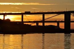 Forth Bridges Sunset (robert55012) Tags: forth queensferry scotland bridge