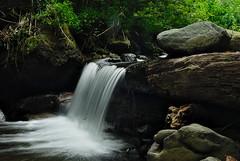 Bedengan river (elly.sugab) Tags: river creek flow water sungai air forest rainforest slowspeed longexposure bedengan dau malang