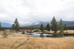 _DSF5432-3 (pixel-ninja) Tags: yosemite nationalpark california tuolumnemeadows