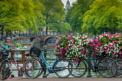 Prinsengracht Canal (roevin | Urban Capture) Tags: amsterdam thenetherlands keizersgracht curch tower water bridge clock gables street gable tree summer saturday slow boat blue sky trees touristic prinsengracht flower flowers bicycle bicycles amsterdampf