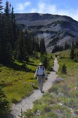 Dad Down along West Frozen Creek (Sotosoroto) Tags: dayhike hiking mtrainier burroughsmountain cascades mountains washington wonderlandtrail trail