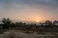 Mist at sunrise (Capturedbyhunter) Tags: fernando caador marques fajarda coruche ribatejo agolada santarm portugal pentax k5 da 1650 f28 28 16mm sunrise nascer do sol nevoeiro landscape outono autumn