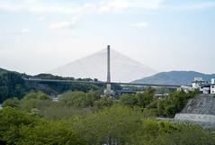 L1009172c (haru__q) Tags: leica m8 colorskopar voigtlander bridge