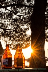Must be beer o'clock! (Anthony Plancherel) Tags: erdek places seascape sunset travel turkey tree trees fooddrink foodanddrink beer beerbottles empty emptybottles silhouette sunstar sunshine beach seaside parasol sea sky sun pinetree bark evening settingsun branches table canon1585mm canon70d canon travelphotography wow