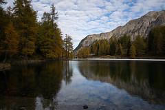 not much sun @ Lai da Palpuogna (Toni_V) Tags: m2401870 rangefinder digitalrangefinder messsucher leica leicam mp typ240 28mm elmaritm hiking wanderung randonne escursione palpuognasee laidapalpuogna preda albulatal albula bergsee mountainlake alps alpen graubnden grisons grischun switzerland schweiz suisse svizzera svizra europe herbst autumn lrchen bald forest wood landscape clouds sky predaspinassamedanbever toniv 2016 161022