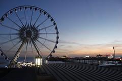Brighton (SaamWallace) Tags: life trip light sun macro love beach wheel clouds canon dark fun brighton live bugs 100mm herts 400mm 500d