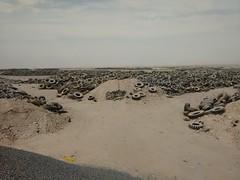 2014-11-06 12.41.53 (felipefonseca) Tags: trip junk tires fieldtrip lixo qatar craftsmen gambiarra vcuq repairmen mfavcuq
