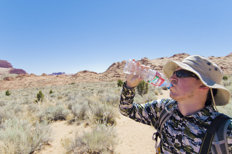 "Drinking in desert • <a style=""font-size:0.8em;"" href=""http://www.flickr.com/photos/28211982@N07/15772808738/"" target=""_blank"">View on Flickr</a>"