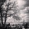 Tlos (VillaRhapsody) Tags: tree monochrome wall ancient roman historical fethiye lykia lycian tlos preroman challengeyouwinner