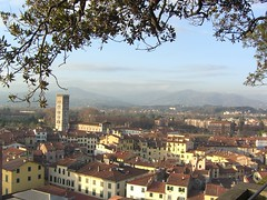 Koine - Lucca