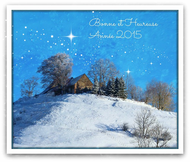 Bonne année à tous ! Happy New year !