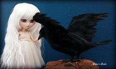 Familiar (pure_embers) Tags: uk white girl fashion de asian eyes doll acrylic dolls planning wig pullip crow dolly luts pure elodie secrets jun embers blois keeper gosick victorique pureembers emberselodie