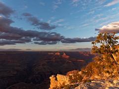 Grand Canyon NP 2014-05-10 19 11 03 (Thorsten0808) Tags: arizona usa grandcanyon olympus omd em5