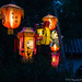 """Nocturne_Pairi_Daiza_13092014-92 • <a style=""""font-size:0.8em;"""" href=""""http://www.flickr.com/photos/100070713@N08/16448429016/"""" target=""""_blank"""">View on Flickr</a>"""