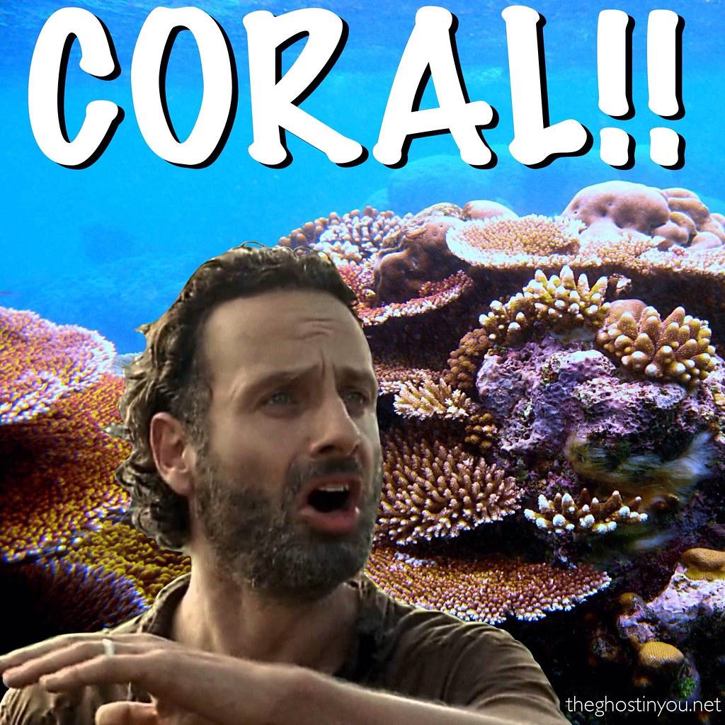 Twd Coral