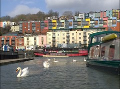 Bristol Harbourside (Bristol_Nicolarrgh) Tags: water docks bristol boat swan harbour swans colourful barge harbourside hotwells grainbarge