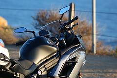 IMG_6388 (OneStyle99) Tags: bike pv verdes palos bero abraam