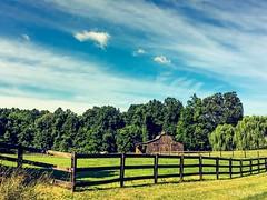 On my morning run  (Explored 7.13.16) (megmcabee) Tags: blue sky horse green clouds barn maryland calvert