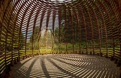 BORGO VALSUGANA. (FRANCO600D) Tags: artesella borgovalsugana trentino trentinoaltoadige aeneaswilder scultura legno ombre opera natura bosco fotocomposizione valsugana artista scultore canon eos600d sigma italia italy italie bellitalia franco600d ila
