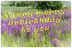 30/52_Anniversary Birthday_A very merry unbirthday to you (regis.muno) Tags: anniversaire nonanniversaire birthday happybirthday unbirthday nikond7000 weekstartingfridayjuly222016 52weeksthe2016edition week302016 anniversary