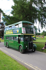 IMGP3859 (Steve Guess) Tags: park uk england bus london vintage coach transport hampshire historic gb regent alton rt lt anstey aec watercressline hants midhants