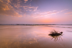 Sunset in Goa (anshu_si) Tags: tokina1116mm
