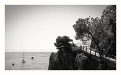 Monterosso (MaViDar) Tags: monterosso monochrome italy