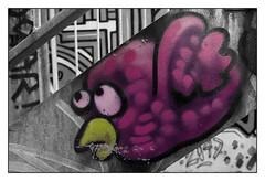 oiseauTagNBC_5153 (cocolokoproducciones) Tags: graffity streetart tags