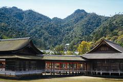 The oldest Noh drama stage in the world (tiagoalexandresilva) Tags: asia honshu japan sonya6000 hiroshima miyajima itsukushima