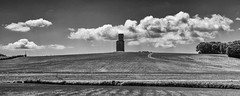 oh, what folly!! (HHH Honey) Tags: sonya7rii dorset sony70300g blackwhite bw googlenikcollection silverefexpro agfa hortonfolly horton folly tower summer birthdaymicrominimoon quirky unusual landscape clouds cloudscape