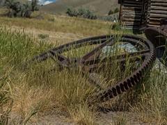 #Old mining machinery at #bannackghosttown . #olympus #olympusomd #utahphotographer #flickr #mirrorless #mirrorlesscamera #montana #rurex #ruralexploration #trailblazers_rurex #patina_perfection #gonebutstanding #discarded_butnot_forgotten #rsa_rural (explorediscovershare) Tags: instagram old mining machinery bannackghosttown olympus olympusomd utahphotographer flickr mirrorless mirrorlesscamera montana rurex ruralexploration trailblazersrurex patinaperfection gonebutstanding discardedbutnotforgotten rsarural
