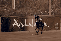 20160814170843 (Federico Alberto) Tags: santamarapoloclub polosotogrande sotograndepolo es espagne espaa polo sotogrand spain olympus omd em1 panasonicleicadgvarioelmar100400mmf463asph horses caballos chevaux cdiz andalusia dubaipoloteam goldcup nophotoshop nohdr