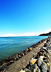 DSC_9422-Sausalito3 (nokhum.markushevich) Tags: sausalito seascape coast california sanfrancisco