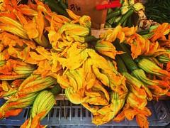 (francesca giordano 3) Tags: zucchini fioridizucchini zucchiniflowers mercato market piazzacavallotti verdura vegetable cibo food foodporn guidaturistica tourguide livorno leghorn toscana tuscany