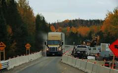Bison (jr-transport) Tags: bison frightliner autumn fall construction 502