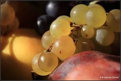Ssse Frchte (Jolanda Donn) Tags: trauben fruchtschale frchte sssefrchte vitamine gesundeernhrung oktober oktober2014 30102014 canoneos650d