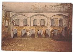 11740957166  Jerusalem Israel Jewish Sanhedrin Tombs (stephaniecomfort) Tags: jerusalem israel sanhedrintombs jewish stamp