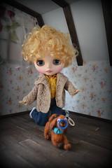 Blythe with a dog (pe.kalina) Tags: doll dollhouse miniature dog blythe dachshund felted felt handmade