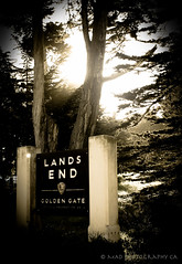 The End (melissa.dehoog) Tags: landsend goldengate parksandrecreation sanfrancisco califronia oceantrees sutro baths sutrobaths