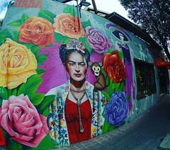Frida y su chango #StreetArt #CDMX (elmalquerido.mexico) Tags: instagram asia south east travel