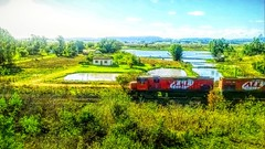 14053942_1070491393000450_8199987118386004286_o (gesielfreire) Tags: landscape collor beauty sunshine paisaje art light lake train
